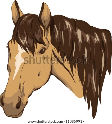Horse Head Stock Photos, Images, & Pictures | Shutterstock