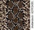 Brown snakeskin - stock vector