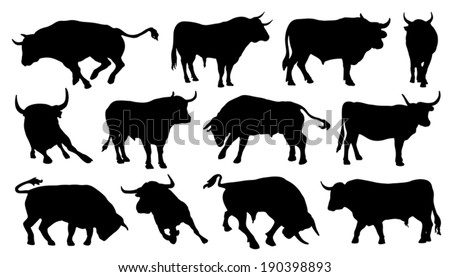 bull silhouettes on the white background - stock vector