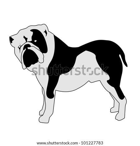 Bulldog abstract silhouette - vector illustration - stock vector