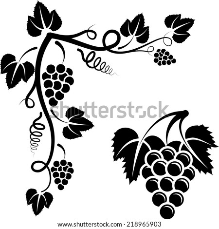 bunch of vine and corner with grapevine - stock vector