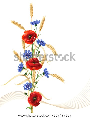 Bunch of wheat ears, red poppy flowers and blue cornflowers isolated on white. - stock vector