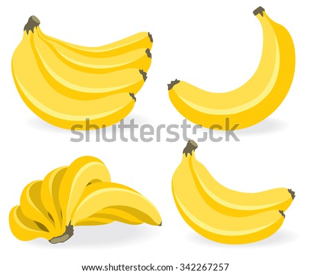 Bunches of fresh banana fruits isolated on white background, collection of vector illustrations - stock vector