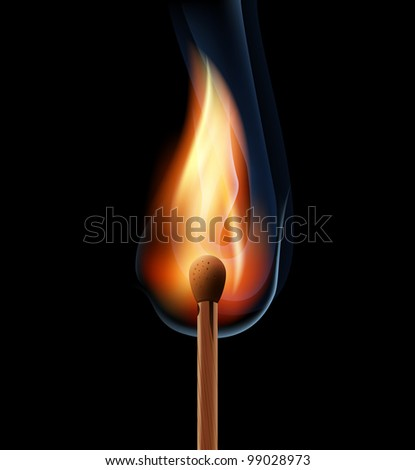 burning wooden match on a black background eps10 - stock vector