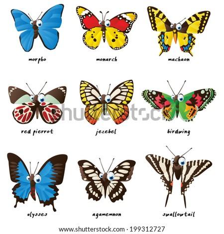 Butterflies: agamemnon, morpho, red pierrot, jezebel, birdwing, machaon, monarch, ulysses, swallowtail - stock vector