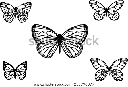 simple line drawing stock photos images amp pictures