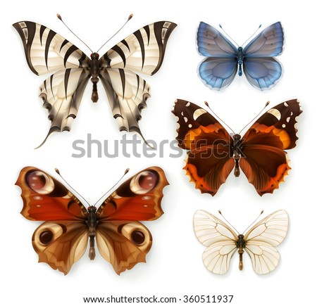 Butterflies, vector icons set - stock vector