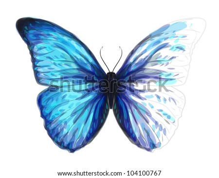 Butterfly  Morpho Anaxibia. Unfinished Watercolor drawing imitation. Vector illustration. - stock vector