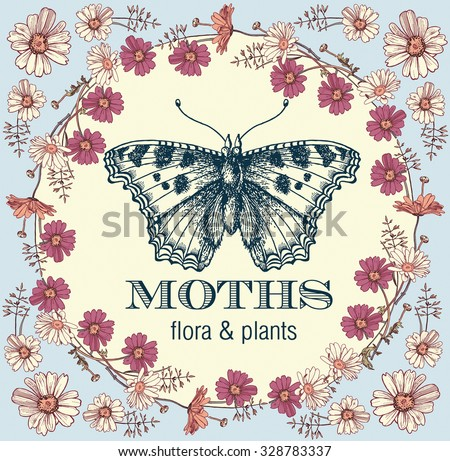 Butterfly, moth. Insect. Greeting card. Poster. Beautiful round frame. Flowers. Chamomile, Wildflowers. Engraving, drawing. Freehand drawing. Flora. Fauna. Vintage vector stock illustration.  - stock vector