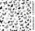 butterfly seamless background - stock vector