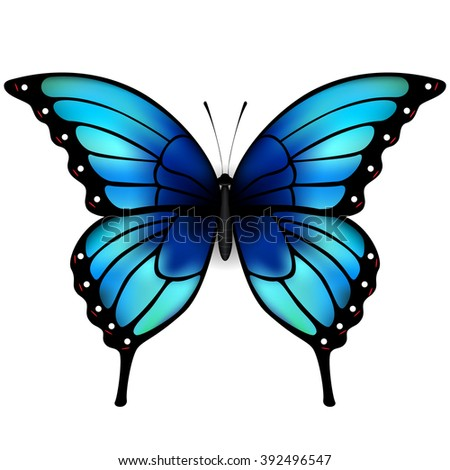 Butterfly with big blue wings on white background. Original hand lettering Spring Time. Illustration for posters, greeting and invitation cards, print and web projects. - stock vector