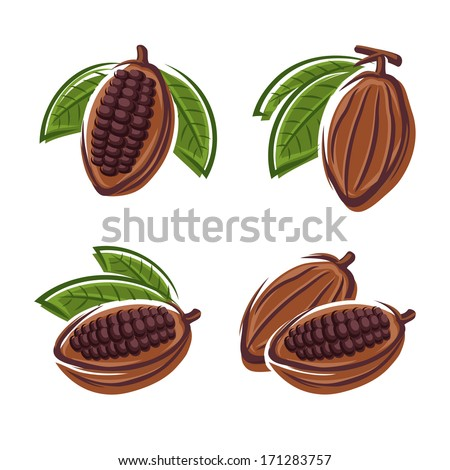 Cacao beans set. Vector  - stock vector