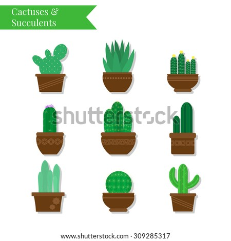 Cactuses and succulents set. Exotic Mexican plants in pots. Decorative succulents and cactuses. Botanical collection. Graphic flat elements. - stock vector