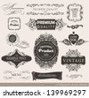 calligraphic design elements, label and page decoration/ vector set - stock vector