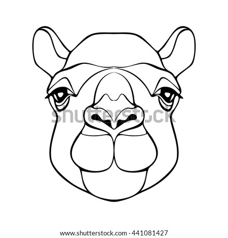 Camel. Head of camel. Camel's head. Head of the animal with a detailed drawing of parts of the face. Camel head monochrome color with black outline. Camel looking directly at you. Vector cartoon camel - stock vector