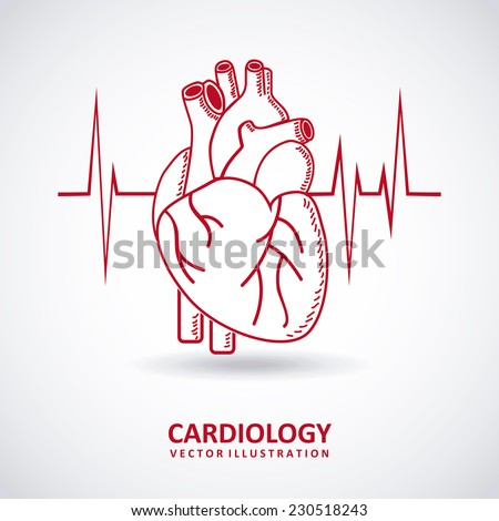 cardiology graphic design , vector illustration - stock vector