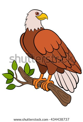 Cartoon birds for kids: Eagle. Cute bald eagle sits on the tree branch and smiles. - stock vector