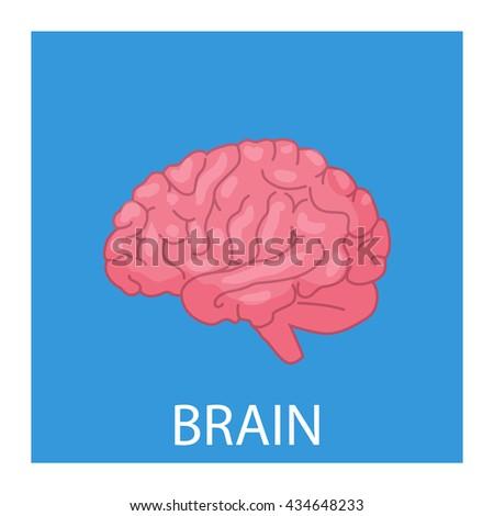 cartoon brain illustration - stock vector