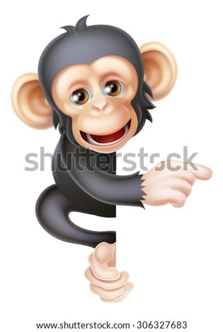 Cartoon chimp monkey like character mascot peeking around a sign and pointing at it - stock vector