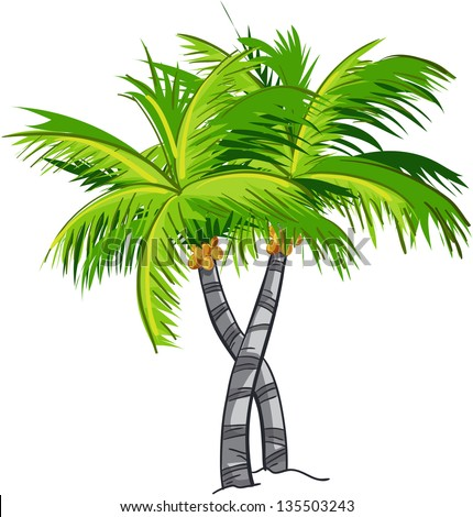 Coconut tree vector Stock Photos, Images, & Pictures ...