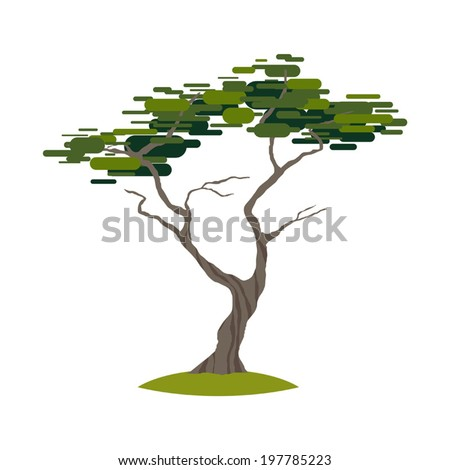 Cartoon crooked cypress tree on transparent background vector - stock vector