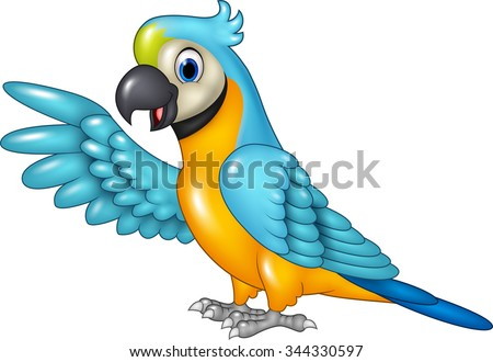 Cartoon funny macaw presenting isolated on white background - stock vector