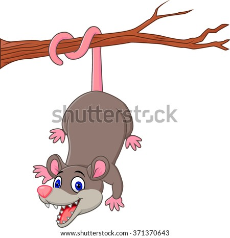 Cartoon funny Opossum on a Tree Branch - stock vector