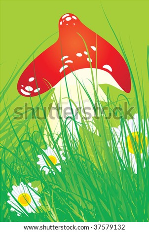 cartoon mushroom - stock vector