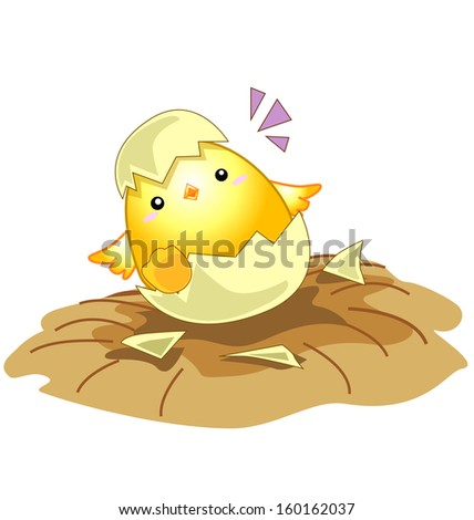 cartoon new born baby chicken egg - stock vector