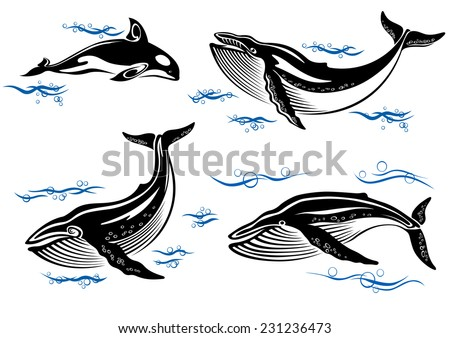 Cartoon vector sea whales with swimming baleen whales and an orca with small ocean waves - stock vector
