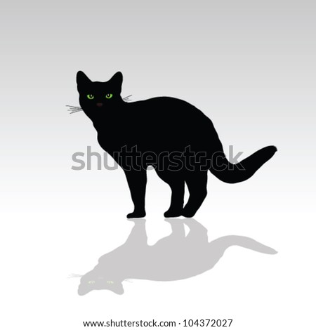 cat with green eye vector illustration on white - stock vector