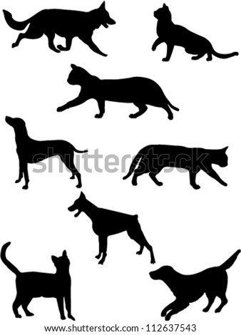 cats and dogs collection vector - stock vector