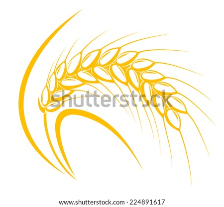 Cereal ear for agriculture or harvesting concept design - stock vector
