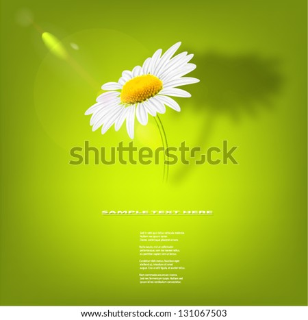 Chamomile against green blurred background. - stock vector