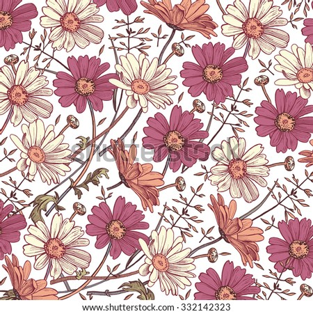 Chamomile. Grass. Wildflowers. Drawing, engraving. Freehand drawing. Beautiful vintage background realistic blooming flowers. White and pink flowers. Flora. Herb. Pharmacy. Vector stock Illustration. - stock vector