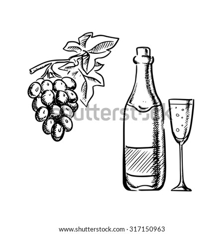 Champagne or sparkling wine bottle with filled glass and grapevine with bunch of grape fruits, outline sketch style - stock vector