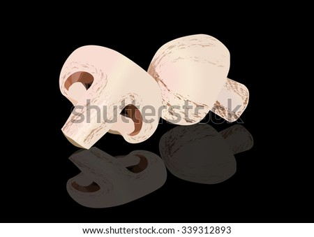 Champignon mushrooms on black background with reflection, vector illustration. Isolated on black. All objects on separate layers - stock vector