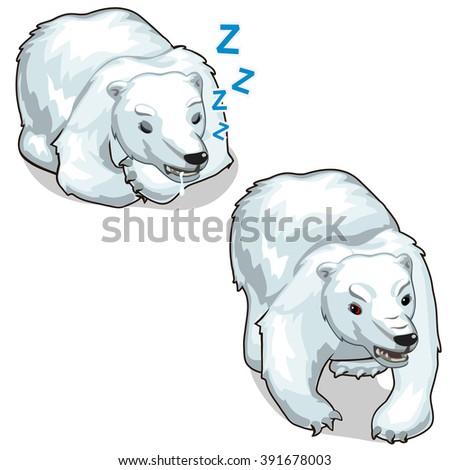 Cheerful and sleeping polar bear. Vector illustration. - stock vector