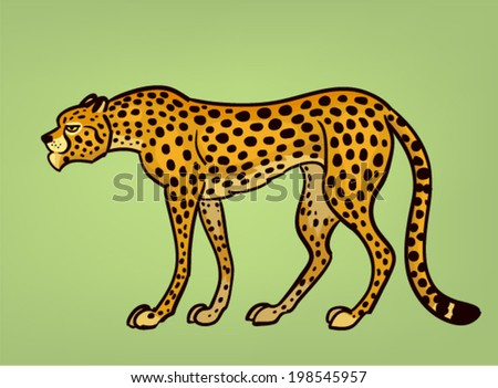 cheetah vector illustration - stock vector