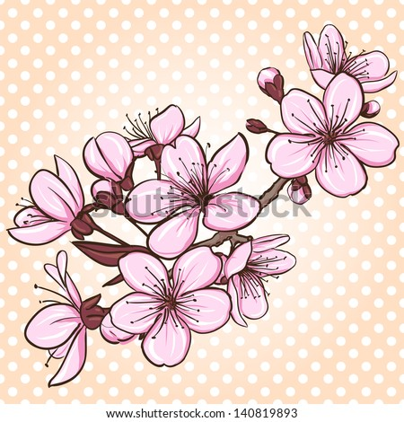 Cherry blossom. Decorative floral illustration of sakura flowers - stock vector