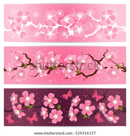 Cherry blossom flowers banner set. - stock vector