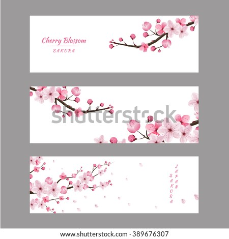 cherry blossom realistic vector, sakura, japan, blur background - stock vector