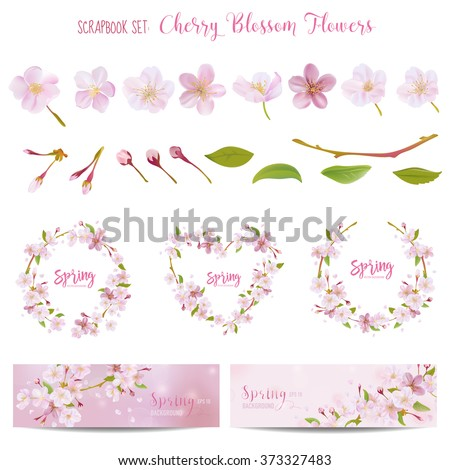 Cherry Blossom Spring Background - in vector - stock vector