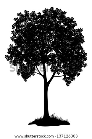 Chestnut tree, black silhouette on white background. Vector - stock vector