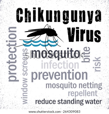Chikungunya Virus, mosquito, standing water, prevention, protection, graphic illustration word cloud. EPS8 compatible. - stock vector