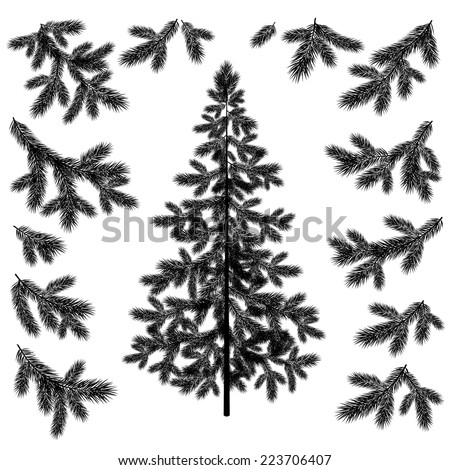 Christmas fir tree and branches black silhouettes set isolated on white background. Vector - stock vector
