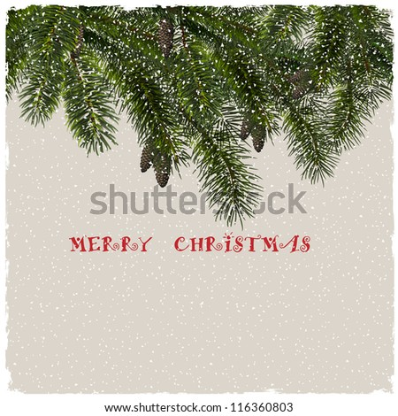 Christmas greeting card with fir branches. Vector eps10 - stock vector