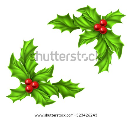 Christmas Holly and red berries design elements - stock vector