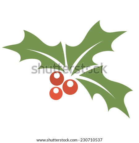 Christmas plant holly berry. Vector illustration  - stock vector