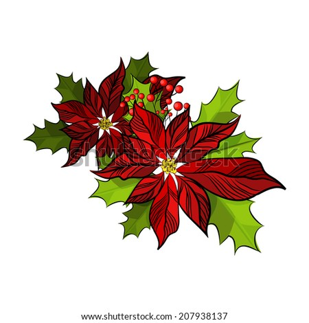 Christmas Star Flower. Vector - stock vector